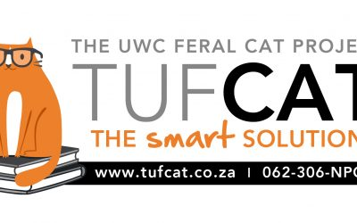 TUFCAT Feral Cat Project Needs Your Help